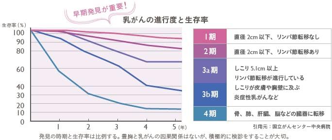 """豊胸と乳がんの因果関係は""""0%"""""""