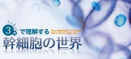 脂肪幹細胞がすぐ分かる再生医療コラム