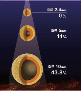 脂肪の直径に見る壊死の割合