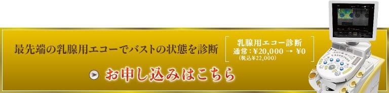 最先端の乳腺用エコーでバストの状態を診断 乳腺用エコー診断 通常:¥20,000 お申し込みはこちら