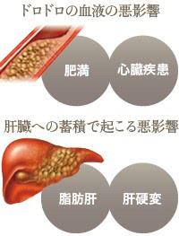 中性脂肪が増え過ぎて起こる悪影響