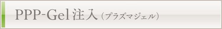 PPP-Gel注入(プラズマジェル)