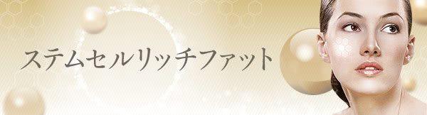 SRF注入(ステムセルリッチファット注入)